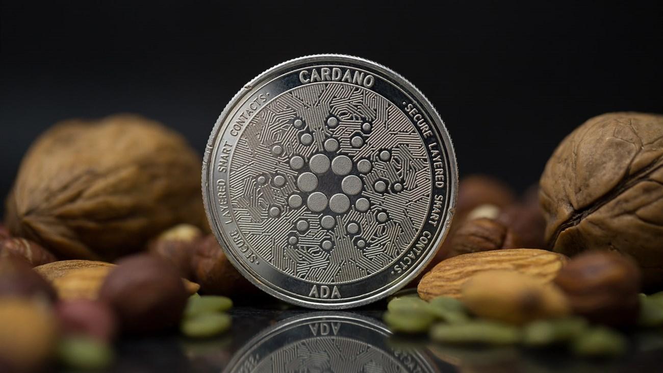 10 đồng tiền ảo phổ biến, đáng theo dõi nhất hiện nay